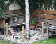 Konijnen buitenverblijf in de tuin