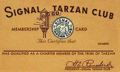 """Signal """"Tarzan Club' Membership Card, circa 1938"""