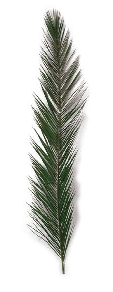 Artificial CHRISTMAS Trees, Artificial Palm Trees, Artificial ...