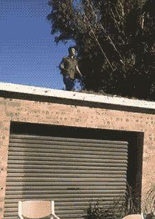 La Escalera es para Novatos   fer Fisica Gif Hombres Suerte Win