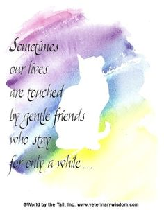 Às vezes, nossas vidas são tocadas por amigos gentis que ficam só por um tempo ... mas permanecem para sempre em nossos corações. by Hercio Dias