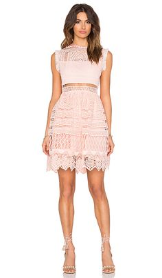 Alexis Sage Fit & Flare Dress in Blossom | REVOLVE