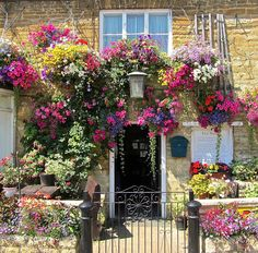 """: """"Summer's lease hath all too short a date."""" Beautiful front garden"""