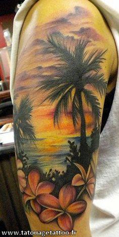03-hawaii-coucher-du-soleil-paysage-bras.jpg (321×640)