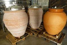 Les amphores où est vinifié le cépage clairette pour élaborer un vin blanc