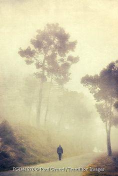 Trevillion Images - man-walking-on-foggy-road