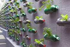 Recicling plastic bottles...this wall looks so pretty..   # Pin++ for Pinterest #