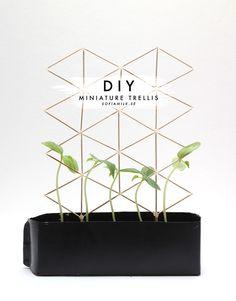 DIY // Miniature Trellis for plants