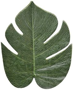 Tropical leaves -luau party decorations - 24 Pack by Fun ... https://www.amazon.com/dp/B00V949G9M/ref=cm_sw_r_pi_dp_RtfwxbEXW6D2J