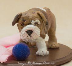English Bulldog Statue, polymer clay dog sculpture, English Bulldog puppy art, dog lover gift, ooak figurine