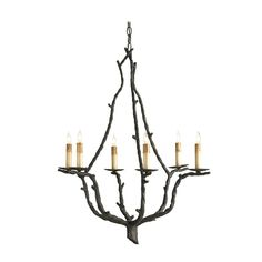 Currey & Co Chandelier in Rustic Bronze Finish | 9006 | Destination Lighting