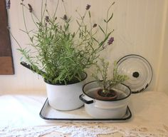 Farmhouse Collection. Enamelware Double Boiler, Pan, Lid, & Tray. White and Black. Extremely distressed and rustic country kitchen decor