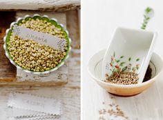 Coriander, Cumin & Turmeric | Pure Vegetarian By Lakshmi