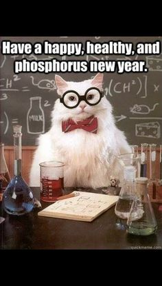 New year Chem Cat! I say he might make it onto the next quiz!!