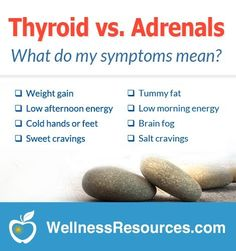 Adrenal Fatigue - Low energy in the morning or afternoon? Salt or sugar cravings? See if your symptoms indicate low thyroid or adrenal fatigue. Adrenal Fatigue Treatment, Adrenal Fatigue Symptoms, Adrenal Glands, Chronic Fatigue, Low Thyroid Symptoms, Hashimotos Symptoms, Thyroid Diet, Thyroid Issues, Thyroid Disease