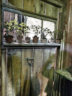 Look at the internet site above just press the grey bar for more choices ~ metal outdoor storage sheds Garden Shed Interiors, Garden Sheds, Potting Sheds, Potting Benches, She Sheds, Shed Homes, Greenhouse Gardening, Through The Window, My Secret Garden