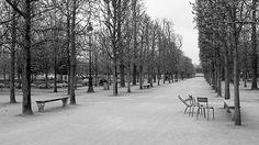 TUILERIE GARDENS, PARIS