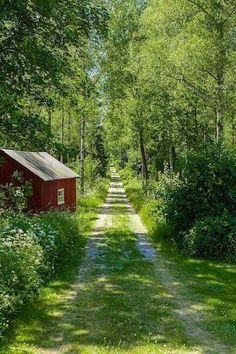 My inner landscape: Photo Beautiful World, Beautiful Places, Country Life, Country Roads, Umea, Back Road, Pathways, Belle Photo, Beautiful Landscapes