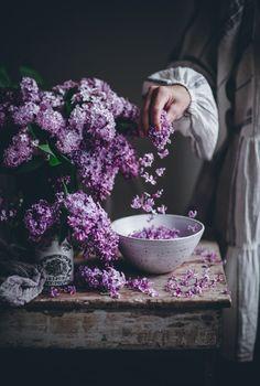 Lavender Aesthetic, Flower Aesthetic, Purple Aesthetic, Floral Photography, Food Photography, Flower Power, My Flower, Call Me Cupcake, Chocolate Spread