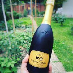 La mia bollicina preferita un perlage super fine. Domenica assieme a @contadicastaldi . Ma com'è l'orto dietro?  #wine #winetasting #winelover #sunday #franciacorta #contadicastaldi #italianwine #foodblog #foodblogger #blogger #foodie #foodporn #wineporn