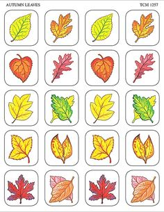 - Autumn Leaves Stickers, 120 Self-Adhesive stickers per pack. Teacher Created Resources stickers are . Thanksgiving Crafts, Fall Crafts, Fall Preschool Activities, Teacher Created Resources, Fall Nail Designs, Leaf Art, Coloring Book Pages, Colorful Drawings, Kids Cards