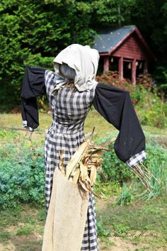 Nice country scarecrow