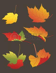 hojas de otoño: ilustración de caída de las hojas de otoño