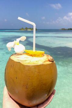 Kokosnuss, Strand & Meer, Malediven / Maldives. Lies mehr dazu auf meinem Reiseblog: Malediven - Traumziel für Flitterwochen & Luxusurlaub