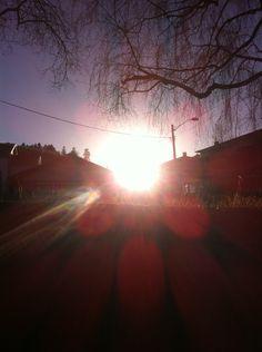 • H E L L E B E R G V E I E N • Celestial, Sunset, Outdoor, Sunsets, Outdoors, Outdoor Living, Garden