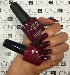 Cnd Contradictions Fall 2017 Collection Rouge Rite