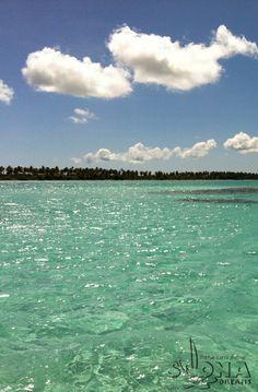 #Piscinas naturales, Isla #Saona