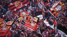 Eintracht Frankfurt fan