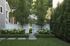 Land Wallpapers ☘︎ House Landscape, Landscape Architecture, Landscape Design, Box Hedging, Plant Companies, Home Garden Design, White Gardens, Garden Gates, Garden Styles