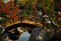 amazingly beautiful japanese garden