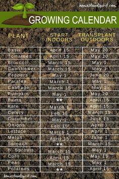 Vegetables Gardening Growing calendar for starting seeds indoors and transplanting outdoors - 10 Garden Seed Starting Ideas You Must Try: Save Money by starting your own seeds. This is a collection of different ways to begin growing seeds at home!