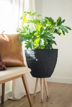sweet house plant holders. Give your resident house plant some midcentury legs to stand on by building  this planter in Large Mid Century Modern Plant Stand with Cement Pot Indoor