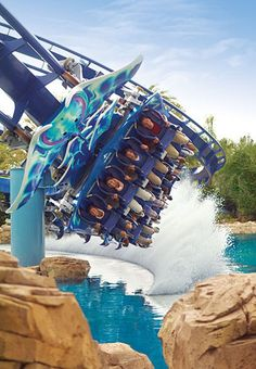 Hopefully next year! Seaworld, Orlando
