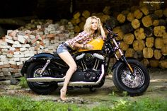 harley davidson motorcycle models | Harley Davidson Forty-Eight sportster