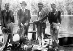 Men holding mastodon bones on a dock at Wakulla Springs, FL, 1931. Florida Memory.