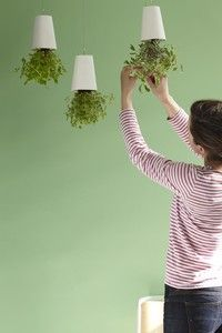 Sky Planter is a fun way to grow fresh herbs and enjoy flowers, very useful with small kids | Boskke
