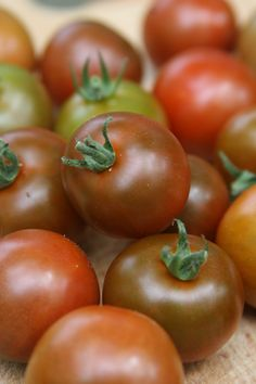 Sunchocola heirloom tomatoes The New England Kitchen