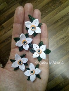 Quilling Videos, Quilling Craft, Quilling Flowers, Quilling Techniques, Paper Quilling, Origami, Little Things, Beautiful Flowers, Floral