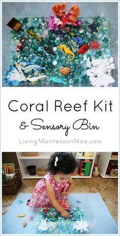 Coral Reef sensory bin created using the Little Passports Coral Reef Kit and Safari Ltd. Coral Reef TOOB