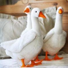 Doll Toys, Pet Toys, Kids Toys, Plush Animals, Felt Animals, Orange Web, Pekin Duck, Sewing Stuffed Animals, Stuffed Toys