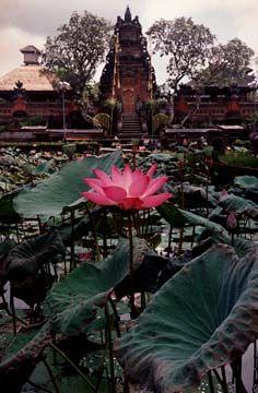 www.villabuddha.com  Bali  Lotus Pond Temple - Ubud - Bali
