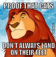 #funnynotfunny #ripmufasa Dark humor is the best humor... im probably going to hell for this