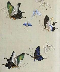 화접도 모시발 8폭 중 모시발에 나비 연습 목요일 이선희님 작품 Korean Painting, Chinese Painting, Chinese Art, Botanical Illustration, Illustration Art, Diy Friendship Bracelets Patterns, Insect Art, Flower Bird, Old Paintings