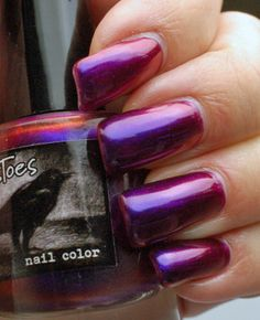 Edgy Polish - Crows Toes Indian Summer