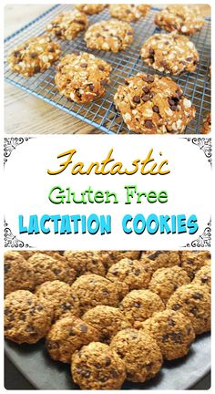 Fantastic gluten free lactation cookies recipe. For more great recipes, visit http://steel-cut-oats.com