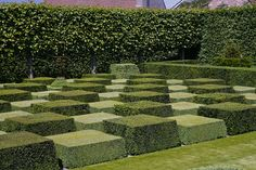 This pic inspires me, but I'm not yet sure how I would translate that into a trail obstacle- maybe a tire pedestal version! Garden Hedges, Topiary Garden, Garden Art, Formal Garden Design, Garden Landscape Design, Landscape Architecture, Pinterest Garden, Classic Garden, Formal Gardens